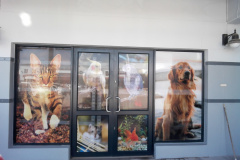 Redblock advertising media - Shopfront window vinyl